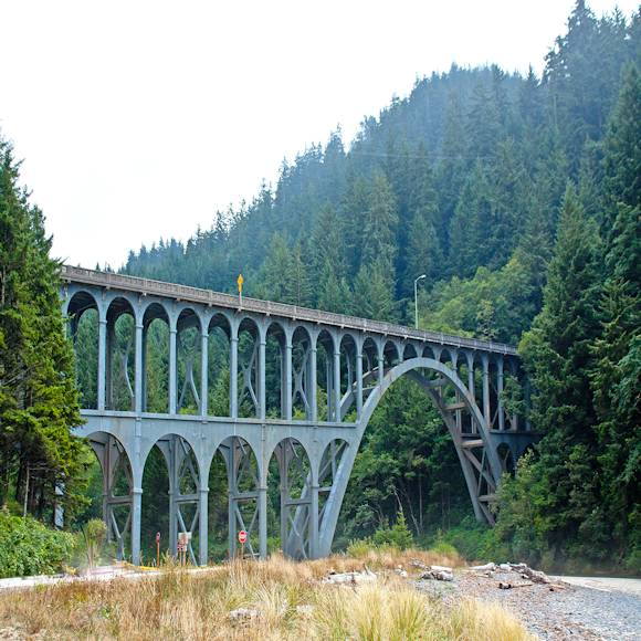 Image of Bridges to Improve Site Accessibility